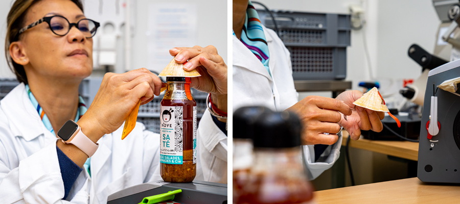 Chapteautage des sauces N'oye
